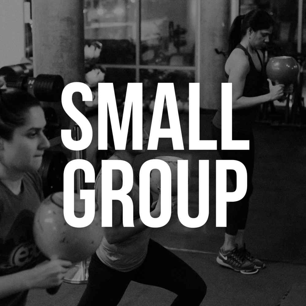 Body Mechanix Fitness, Small Group Fitness