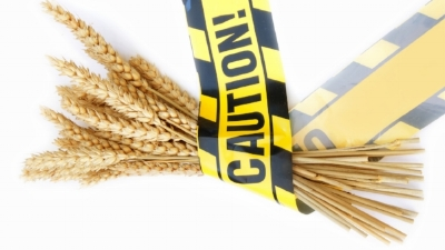 GlutenFree_Celiac_Disease_Image.jpg