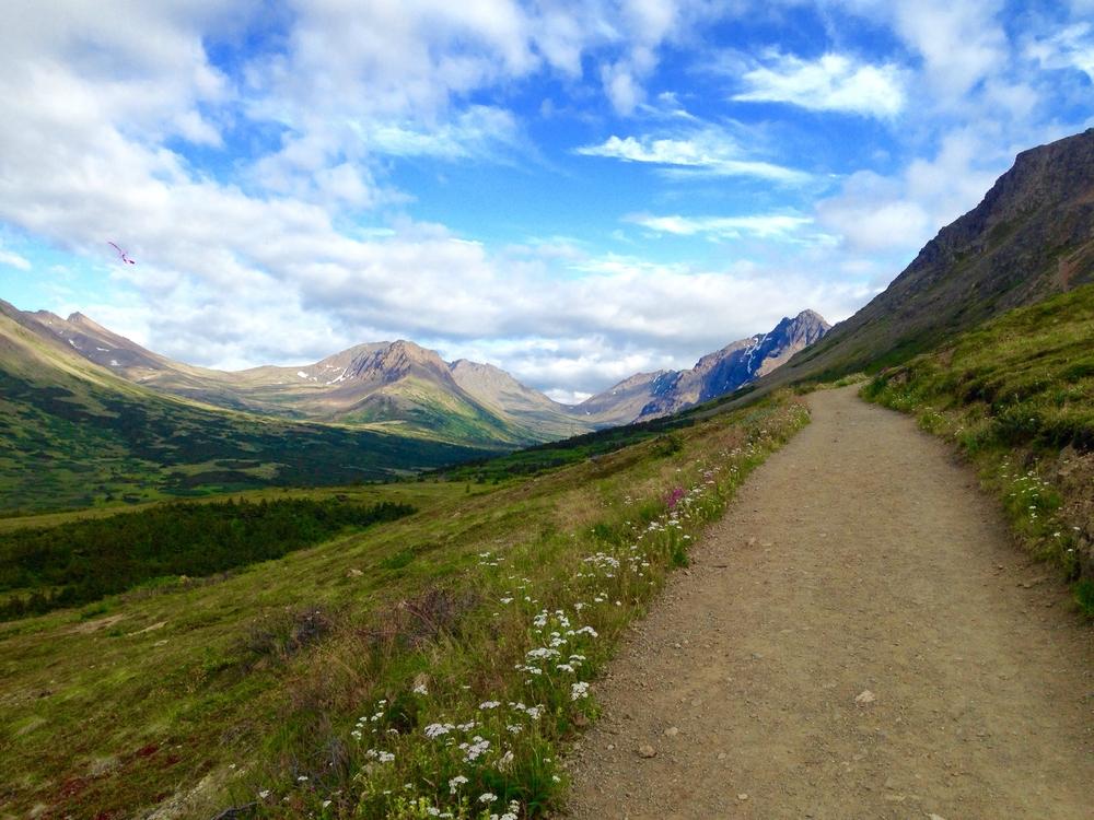 Trail along Flattop Mountain