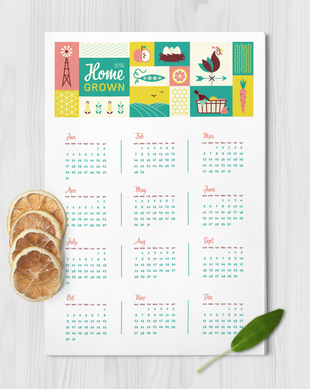 Home Grown 2016 calendar / personal project / 2015