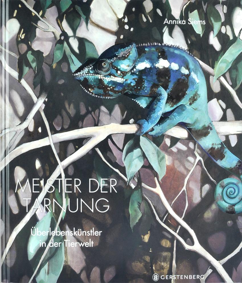 Cover Meister der Tarnung.jpg