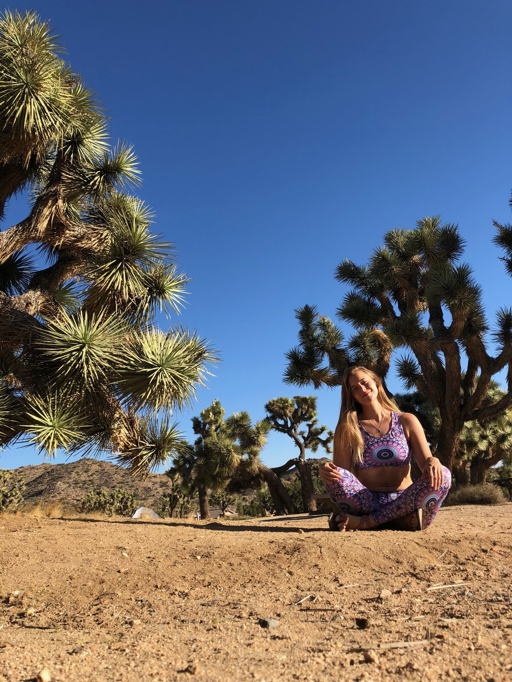 Wolven Threads at Joshua Tree