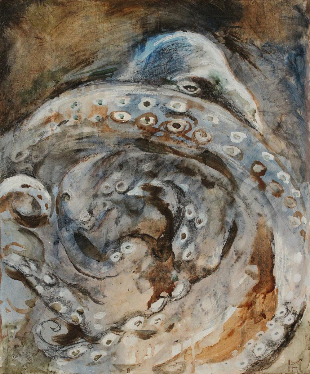 Order of Octopoda