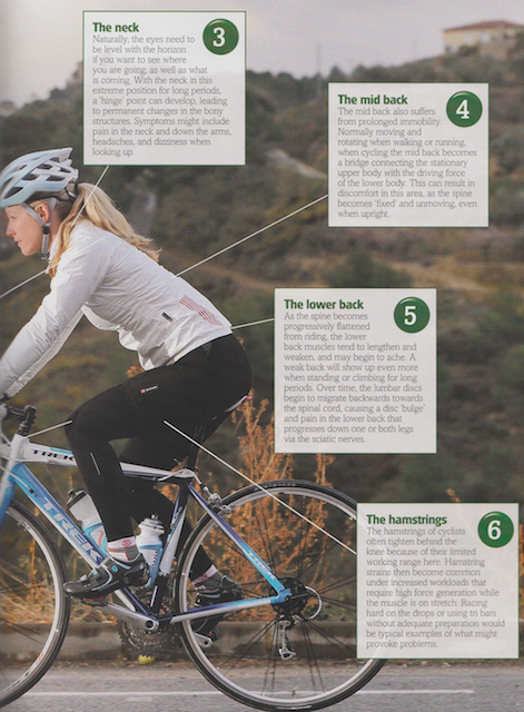 The constant position in which our bodies must work when we are on the bike can lead to problems, unless we take care to maintain a balance when we're off the bike - stretching out overworked muscles and strengthening those we use less  Publication: Health & Fitness For Cyclists  Feature title: Strengthening your position | PDF1 ,  PDF2