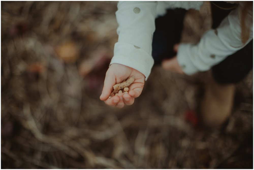 Milwaukee Family Photographer | Daddy and Daughter Fall Session | Young girl's hand of seeds.