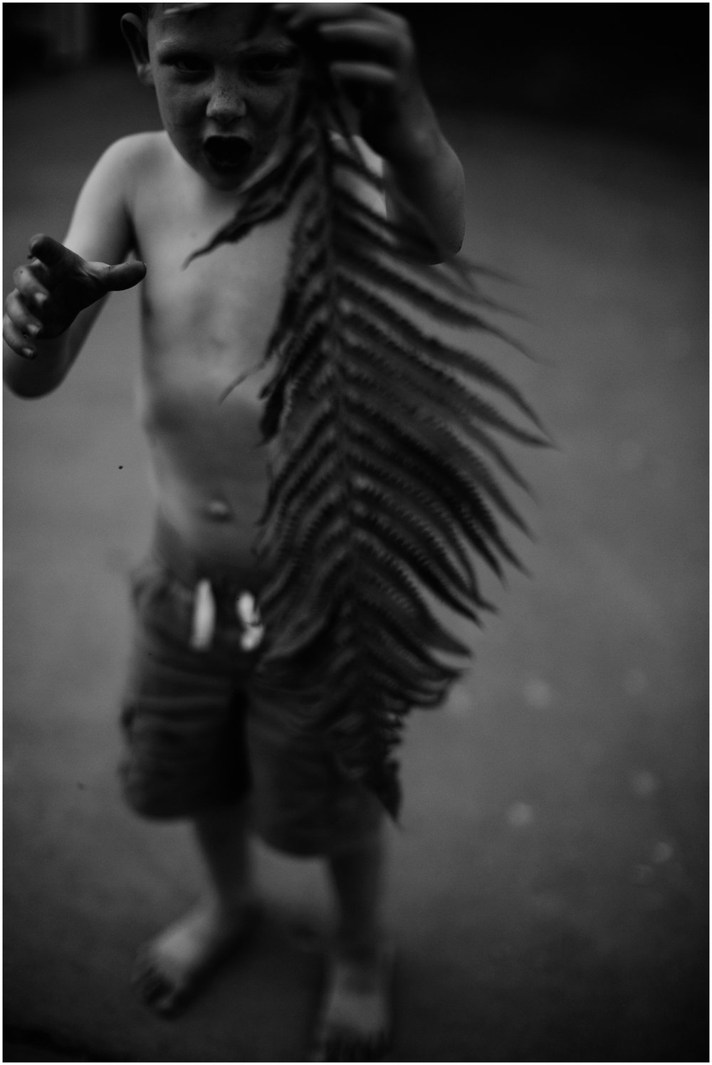 Milwaukee Lifestyle Photographer | Documentary photography of young boy's childhood | Boy holding fern.