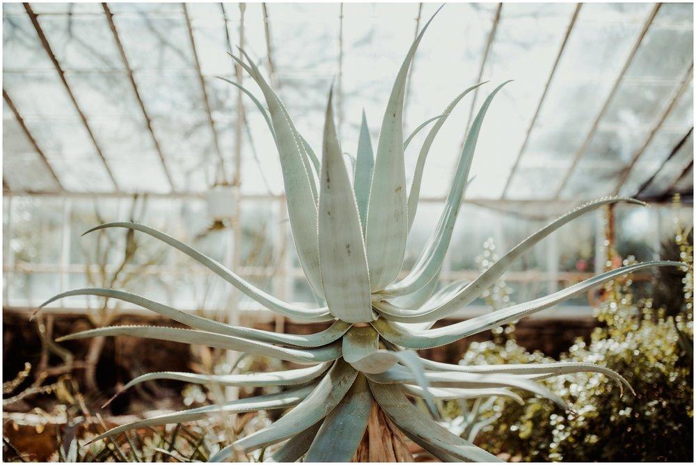 phoenix-lifestyle-photographer-trip-to-boyce-thompson-arboretum_0006.jpg
