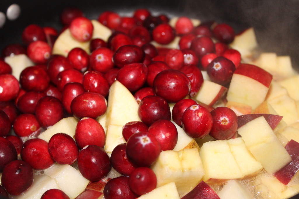 Fresh Cranberry Chutney