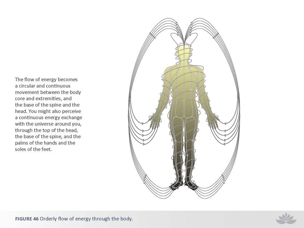nwd-illustration-18-2.jpg