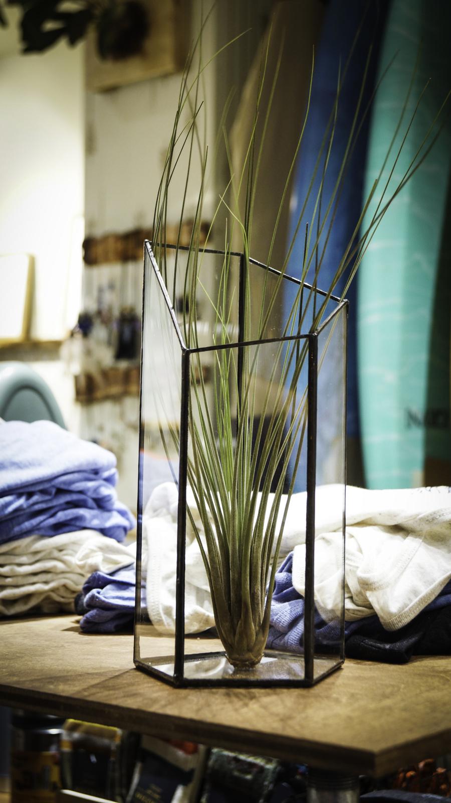 a370cd600907e51b-vase.jpg
