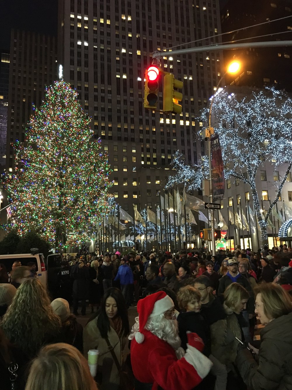 The famous Christmas tree at Rockefeller Centre with a gazillion tourists  {and Santa!}