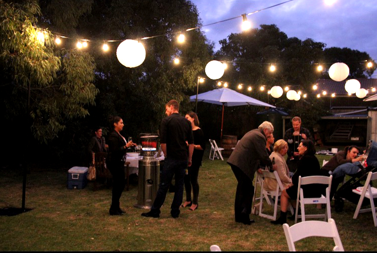 Festoon Lights $33 per 10m length