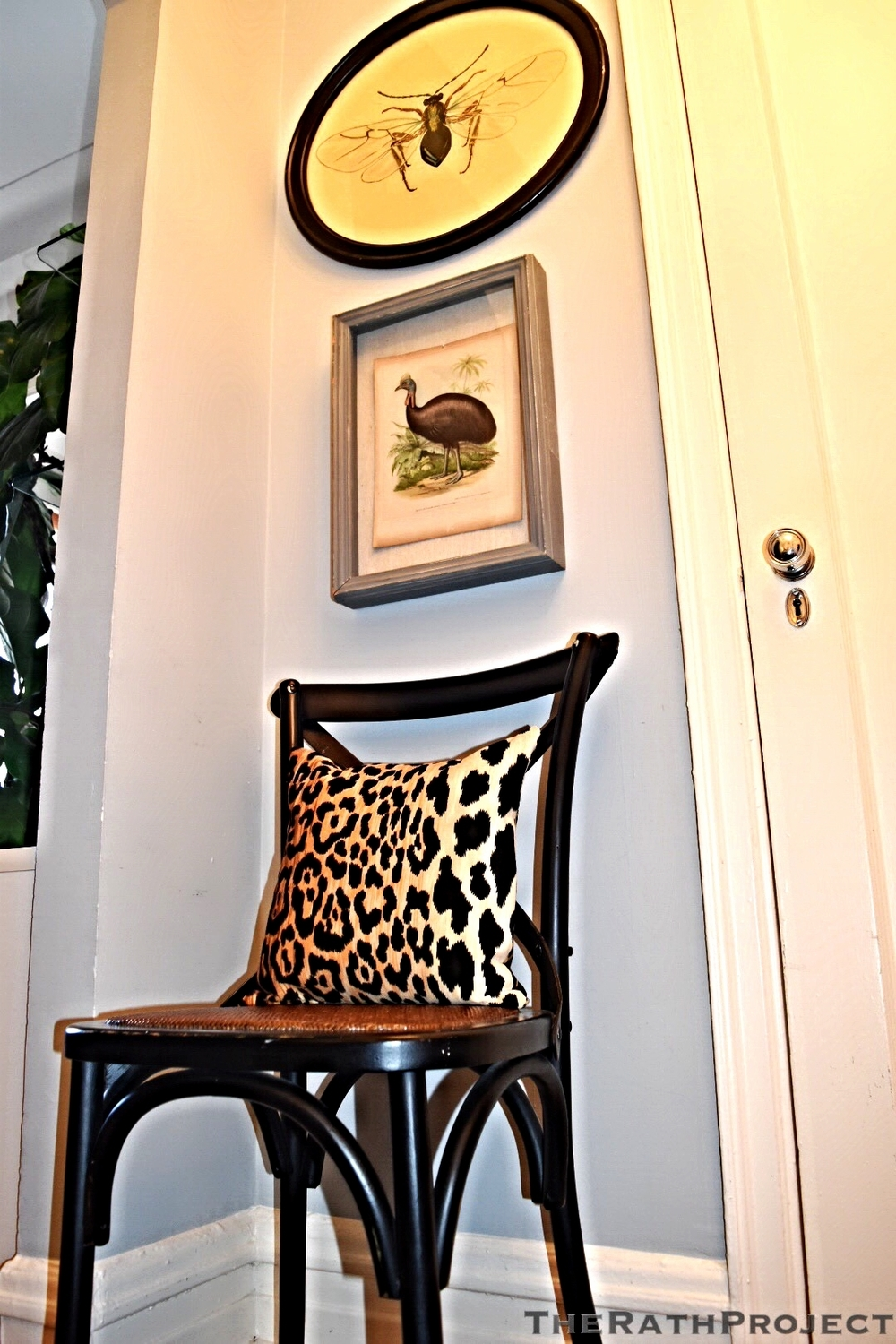 Quirky Display of Leopard in Our Foyer