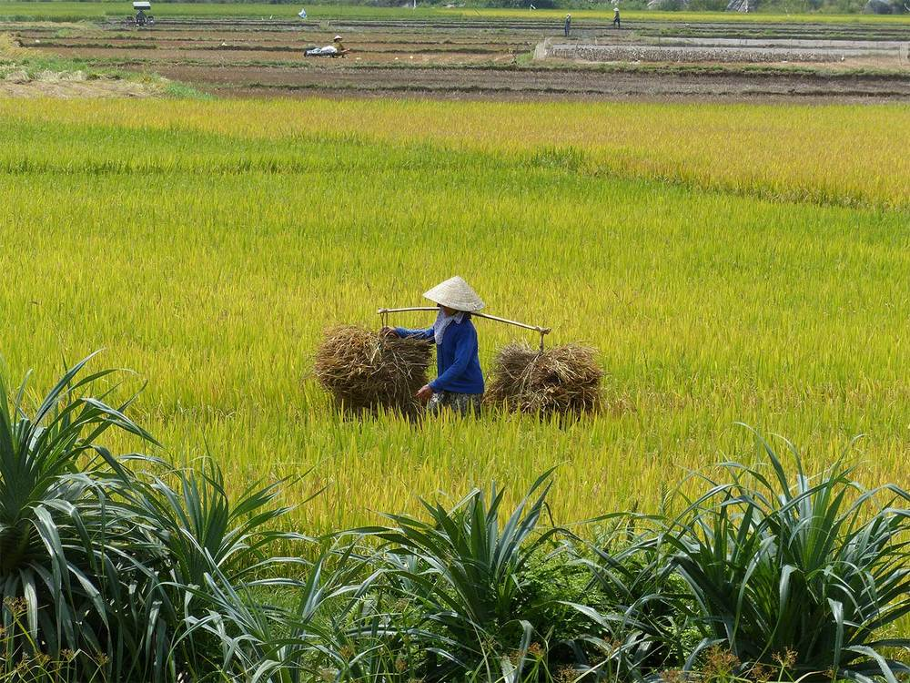 Vietnam-Heritage-Cycle-Masthead-4.jpg