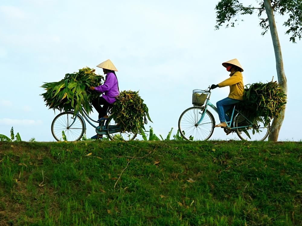Women on Bikes (1).jpg