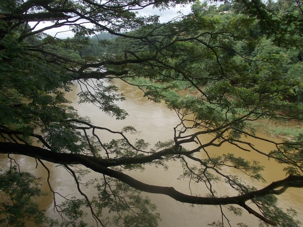 river-182677_1920.jpg
