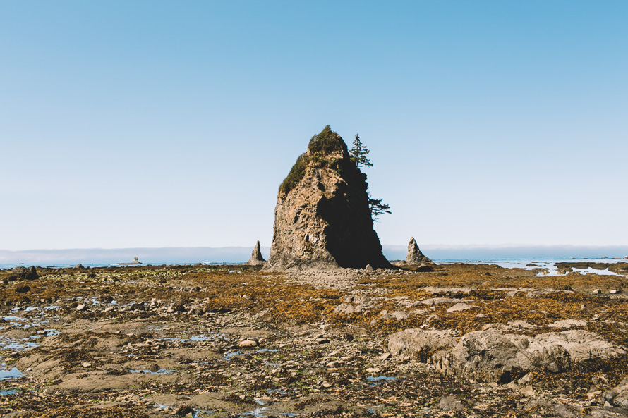 Olympic National Park Photo-10