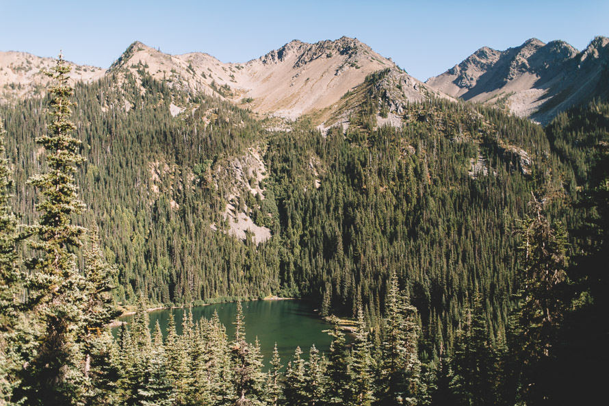 Olympic National Park Photo-106