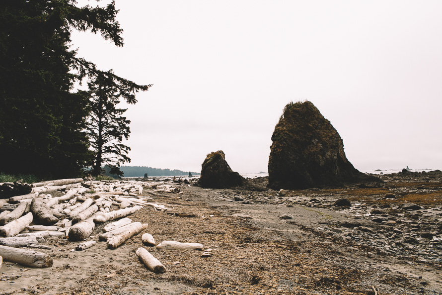 Olympic National Park Photo-14