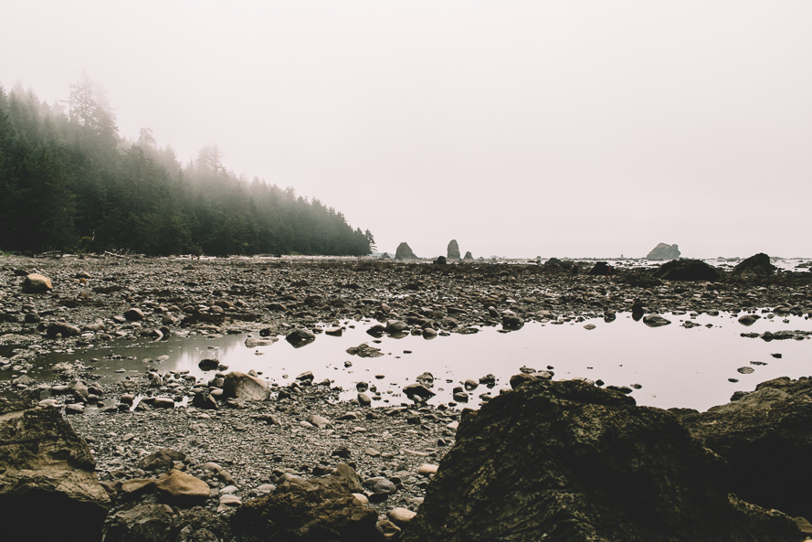 Olympic National Park Photo-15