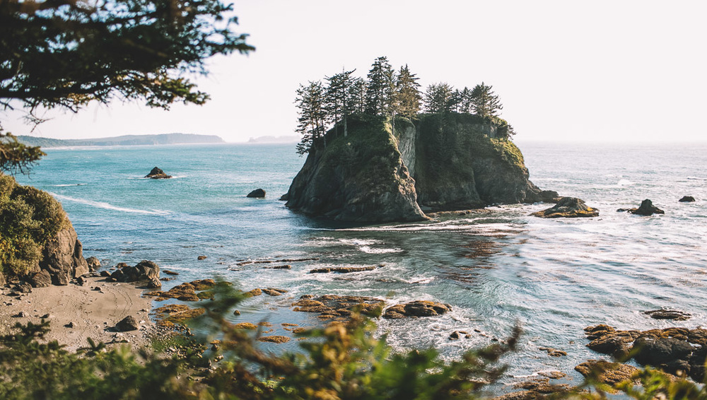 Olympic National Park Photo-69