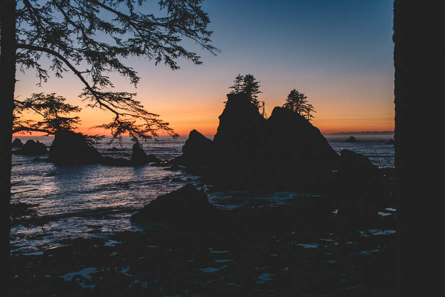 Olympic National Park Photo-71