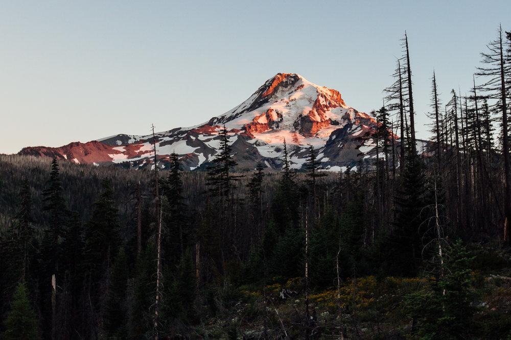 Mt Hood-1.jpg