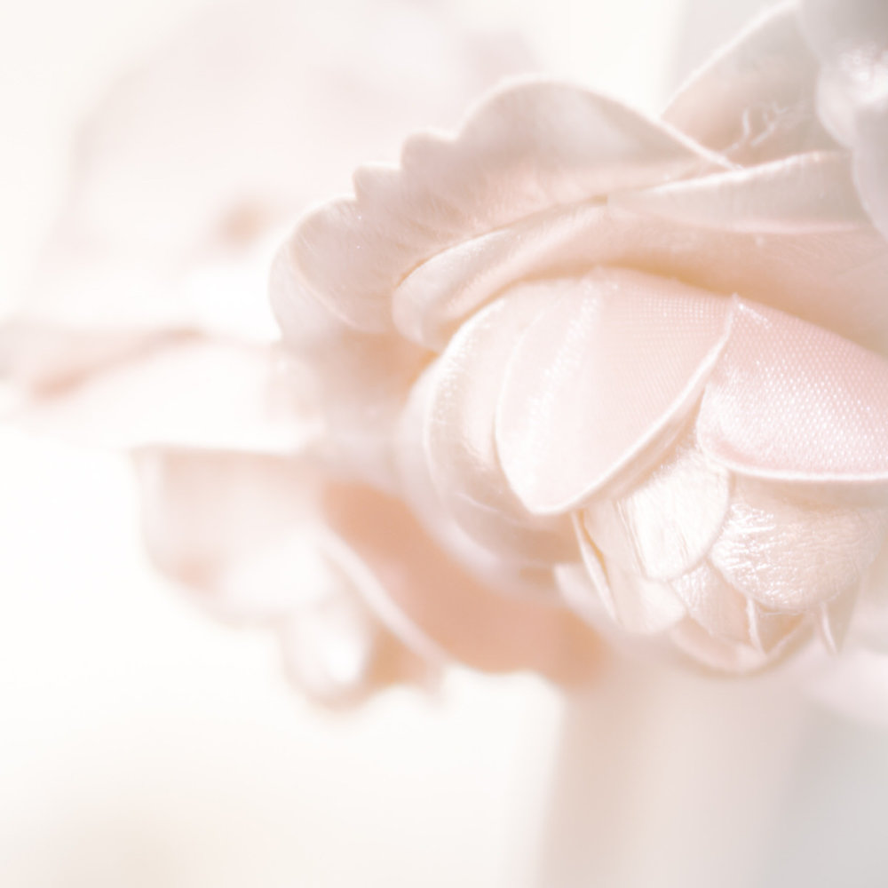 Wedding Bridal Details Bellevue Silk -2.jpg