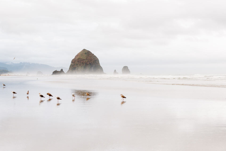Cannon Beach, Haystack Rock, OR engagement session
