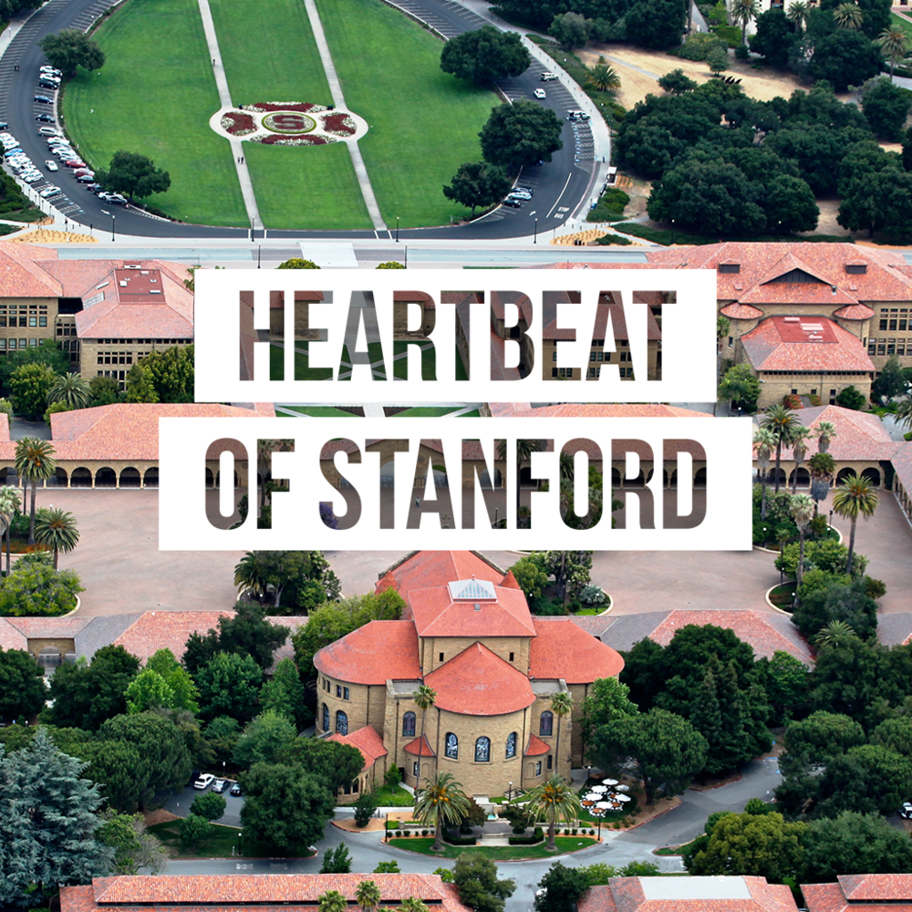 stanford cover.png