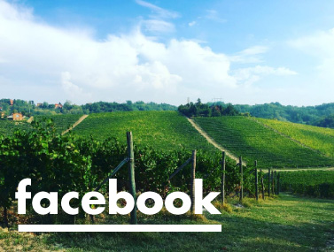 facebook winery.jpg