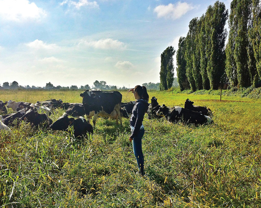 Farmer Elisa with her cows