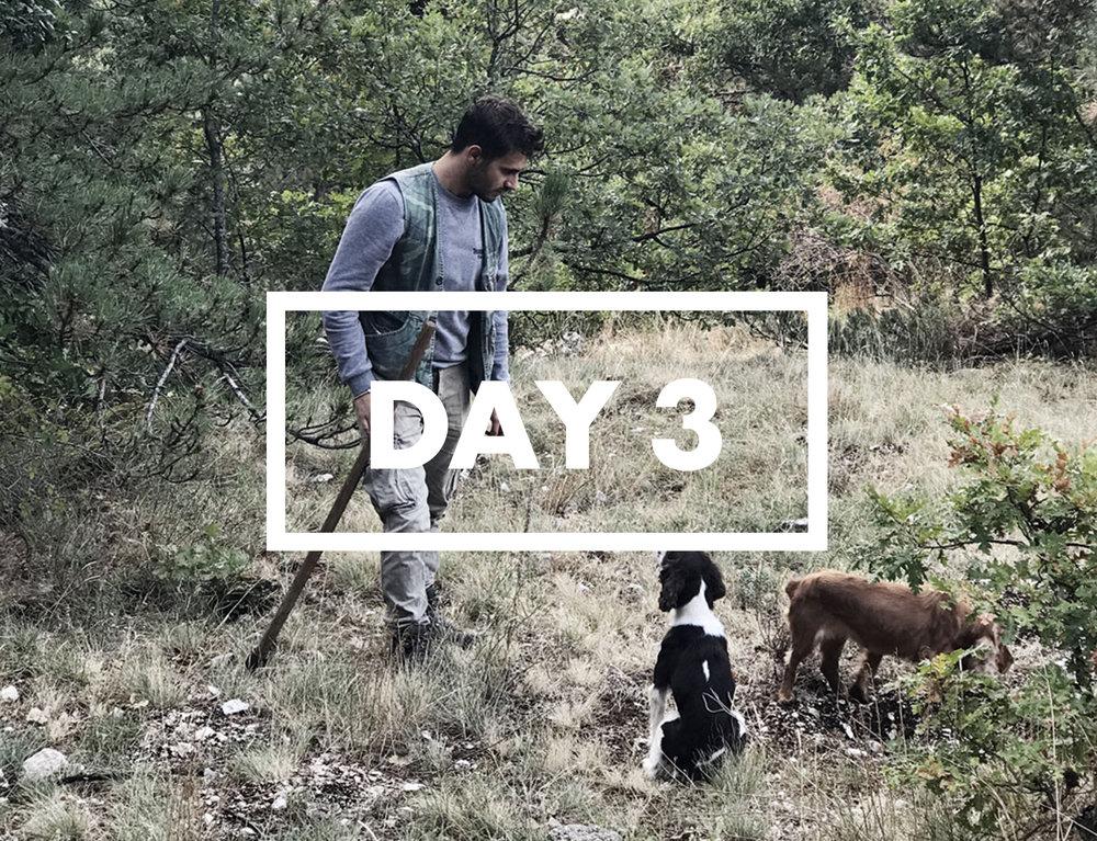 Truffle hunter and his dogs - Abruzzo Italy.jpg