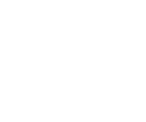 White PULSE Logo.png