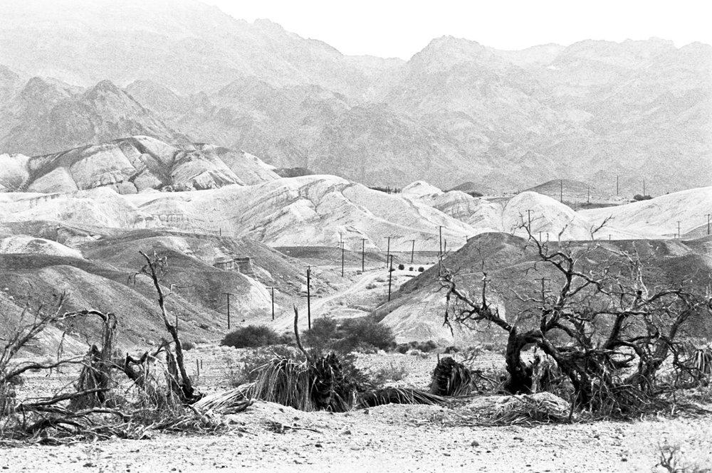 Death_Valley_Nienke_Lit_KealanShilling_Dec_2016_373.jpg