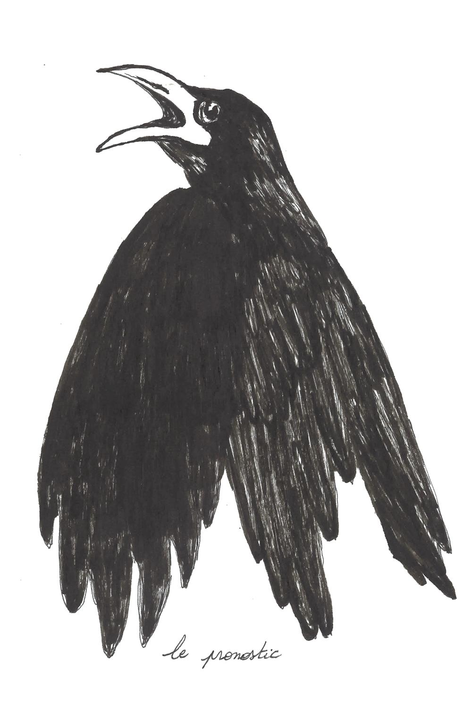 56 corbeau- pronostic.png
