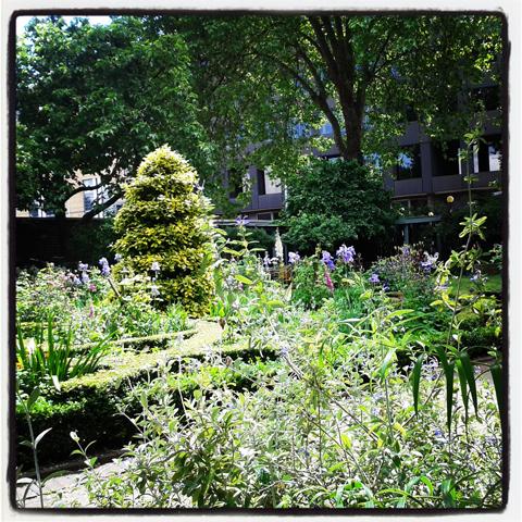 Garden Museum Garden