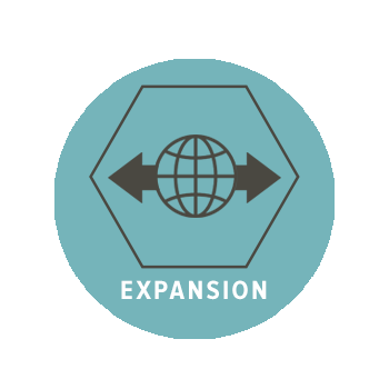 Expansion Icon NEW.png
