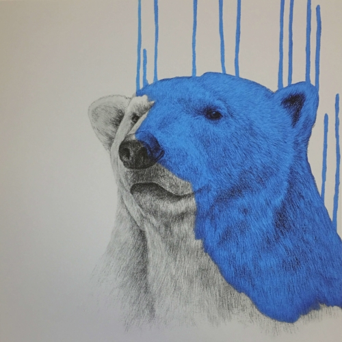 Hey There Polar Bear by Louise McNaught