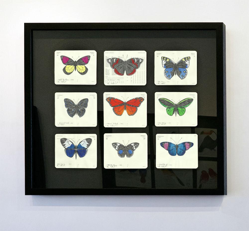 A Flutter by Fran Giffard