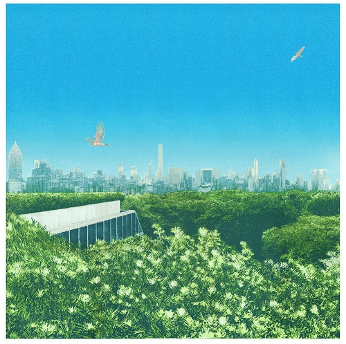 Central Park Treetops by Emma Reynolds