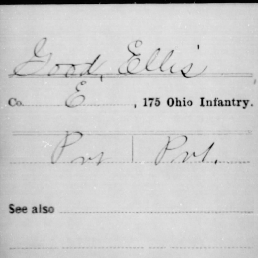 Pvt. Ellis Good, Co. E, 175th OH Infantry, USA