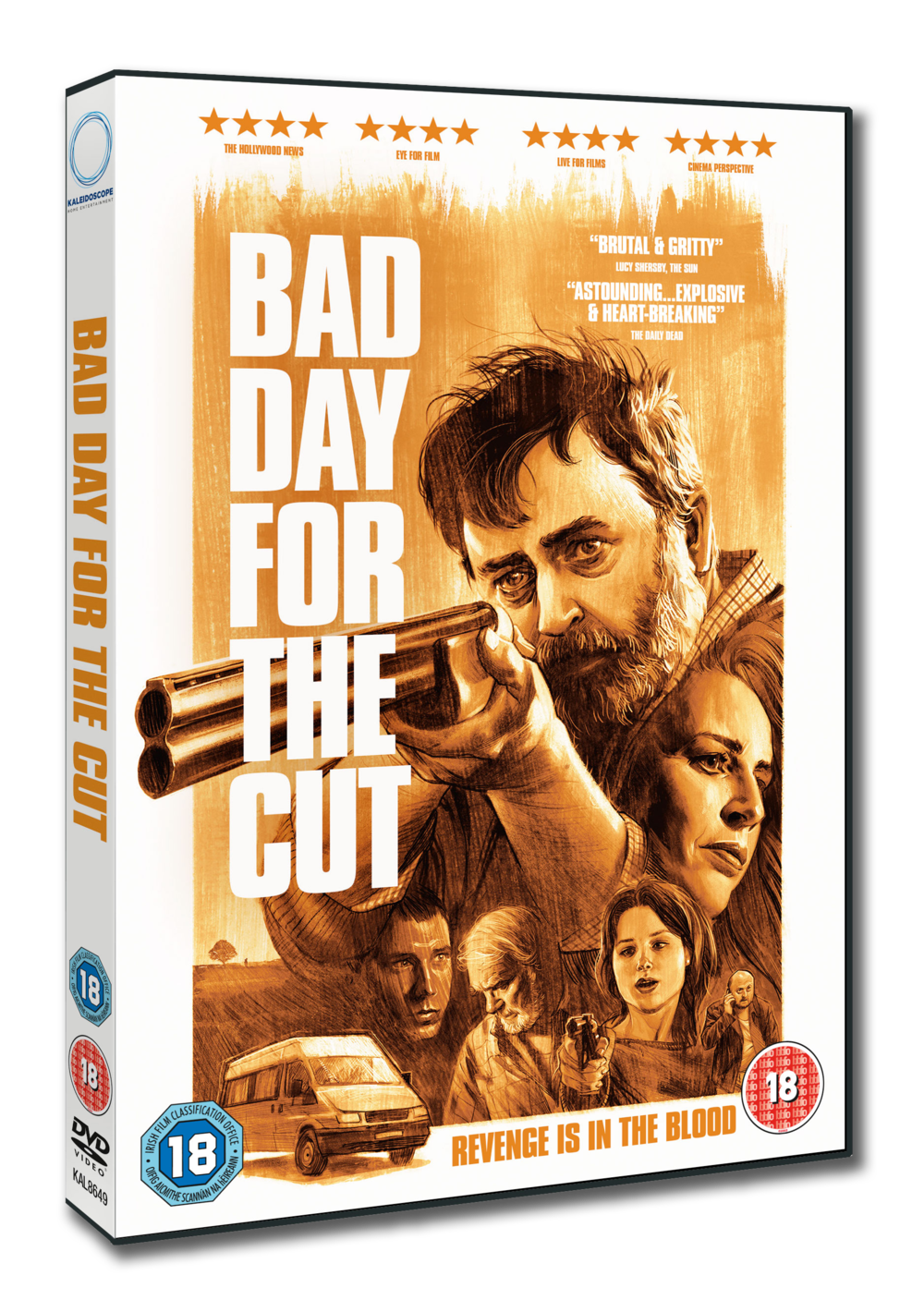 BAD_DAY_FOR_THE_CUT_3D_DVD.png