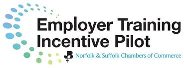 Employer Training incentive pilot