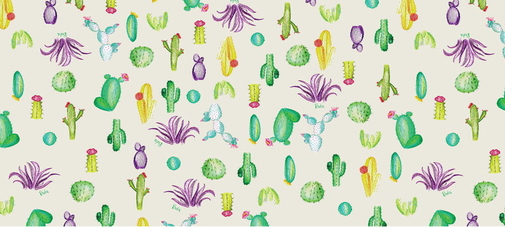 cacti-aop-bula.jpg