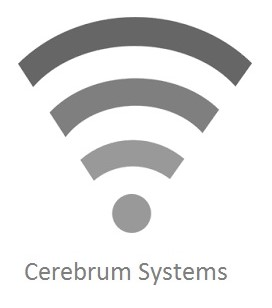 Cerebrum Systems