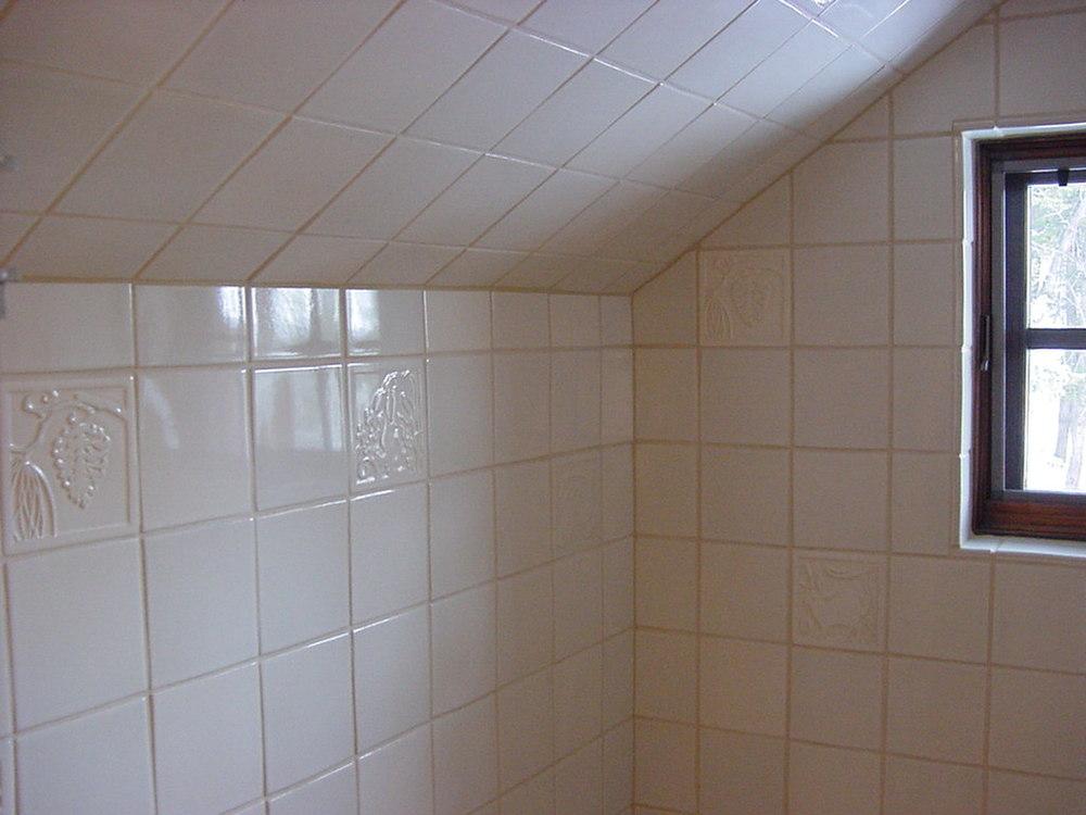 shower stall2.jpg