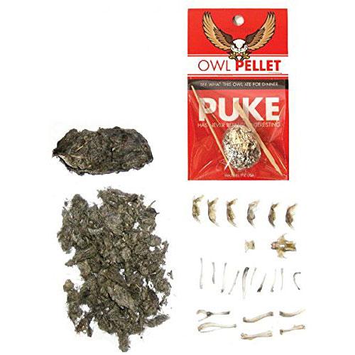 owl pellet open.jpg