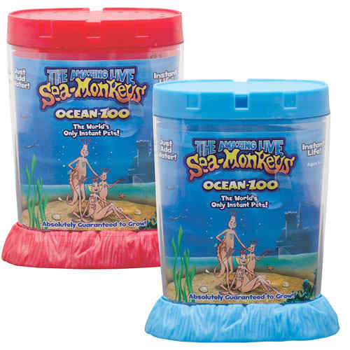sea monkeys.jpg