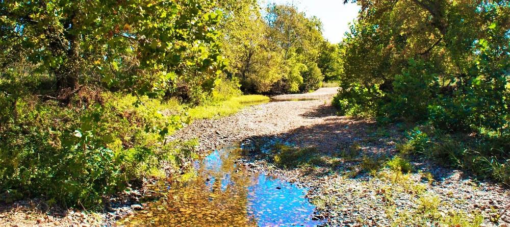 creek final.jpg